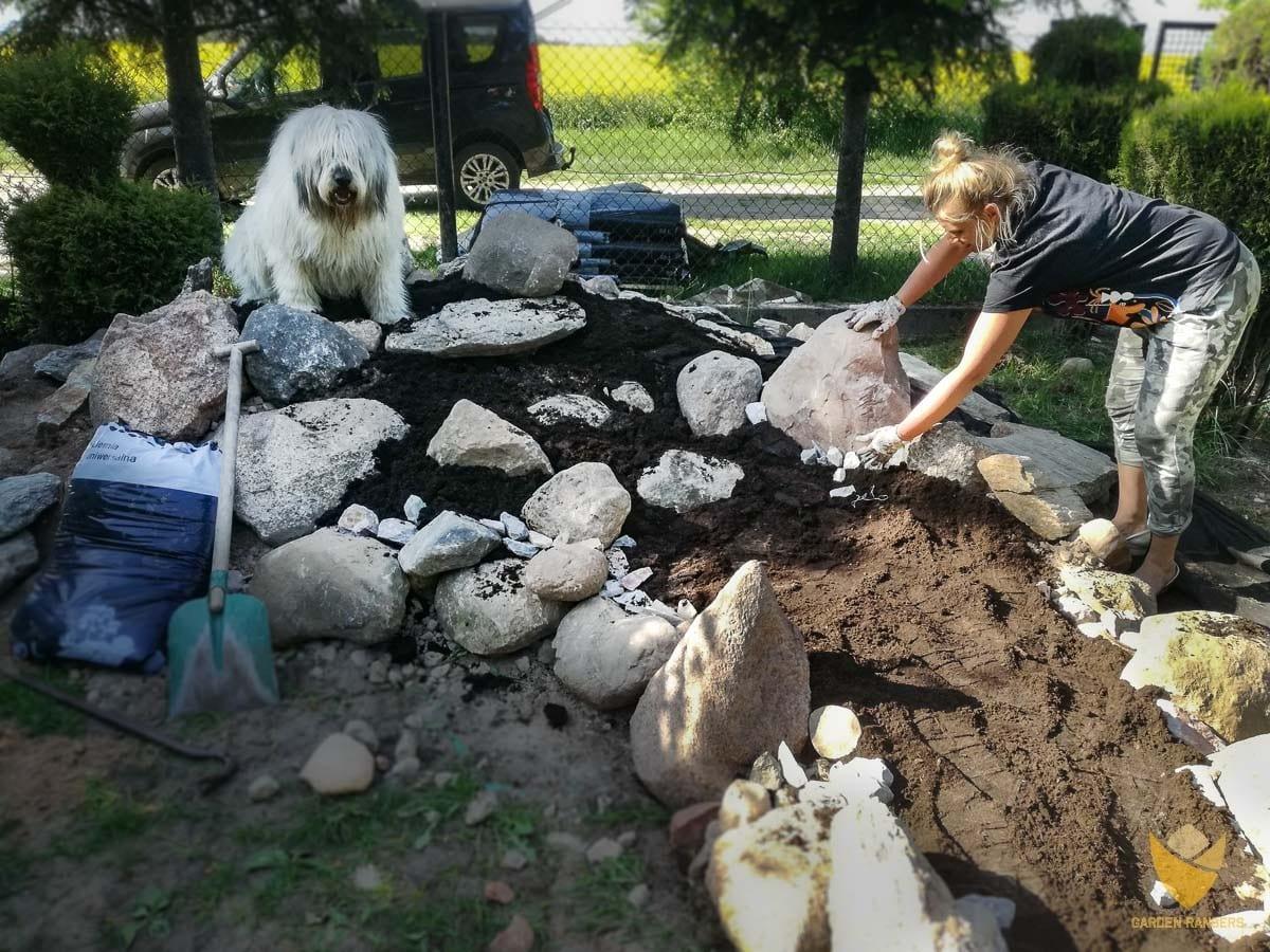 układanie kamieni pod budowę skalniaka; pies sumiennie wykonuje rolę brygadiera