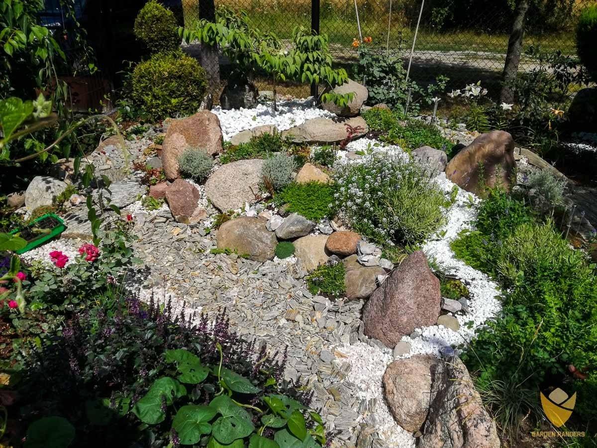 ogród skalny z kamienną imitacją strumienia