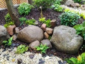 paprotki-wsrod-mokrych-glazow-granitowych