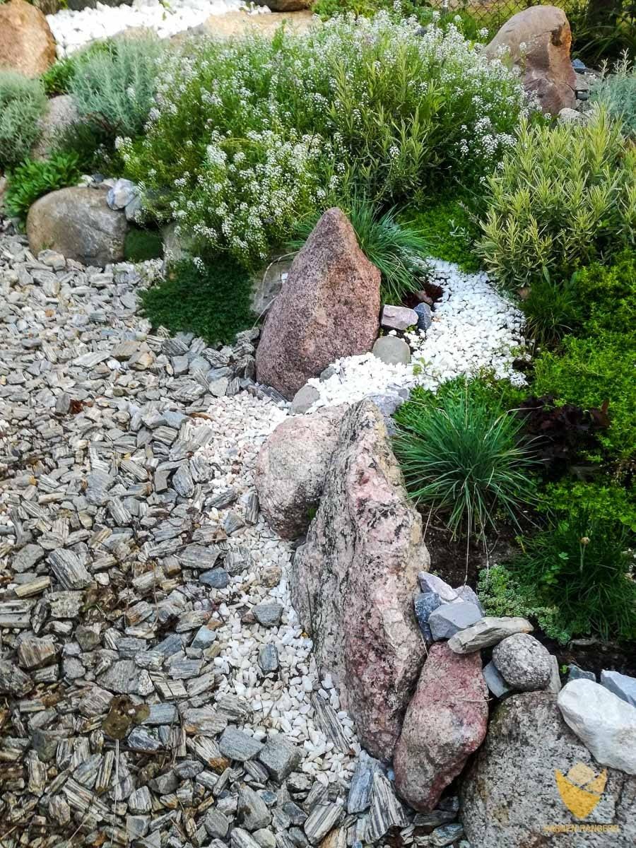 obsadzenie skalniak roślinami płożącymi