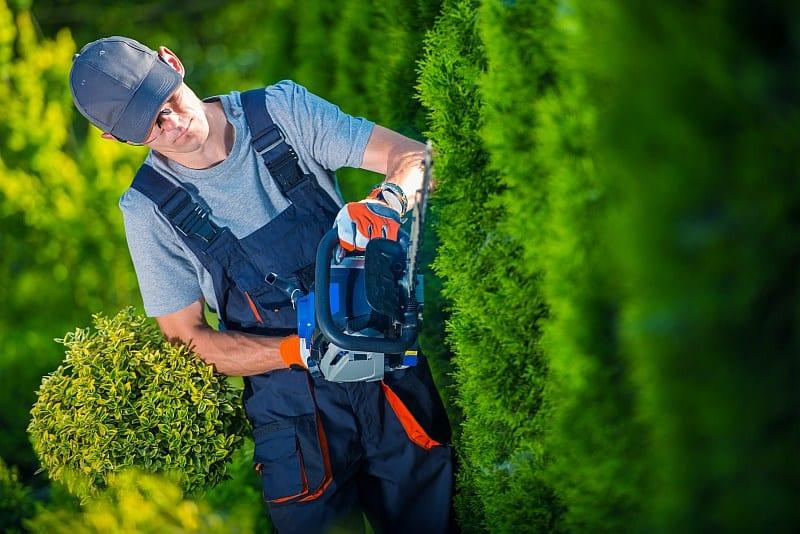 Pielęgnacja ogrodów i zieleni