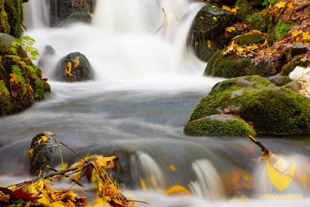 parkowy wodospad z jesiennymi liscmi