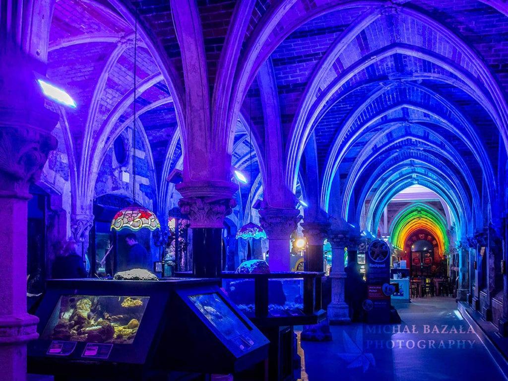 gotyckie wnetrze w polaczeniu z nowoczesnym oswietleniem led