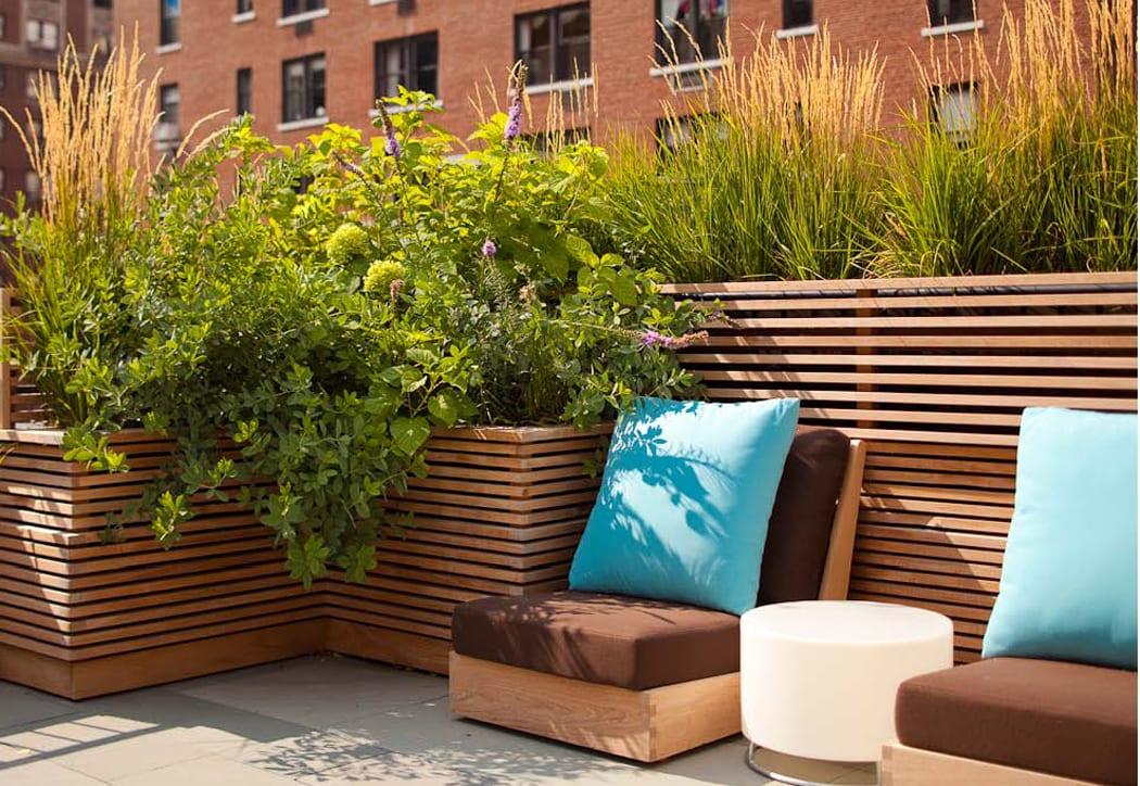 Roślinyna balkonie