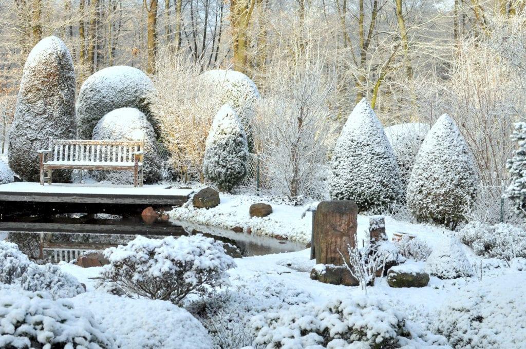 Oczko wodne w zimowej scenerii ogrodu
