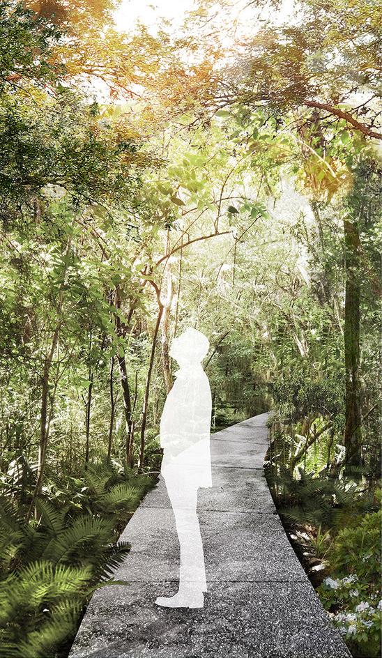 Wizualizacja ścieżki w rezerwacie